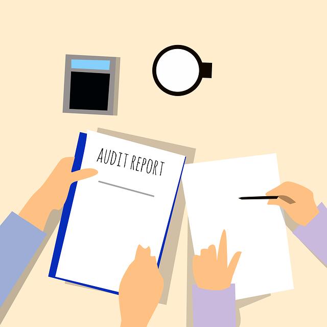 žádaný audit